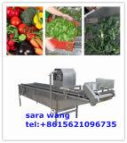 Моющее машинаа фрукт и овощ пузыря