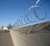Alambre de púas acordeón del hierro de /Razor para la cerca de protección