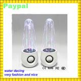 Haut-parleur stéréo de grand de danse de Hotsell de l'eau haut-parleur actif de haut-parleur (GC-C55)
