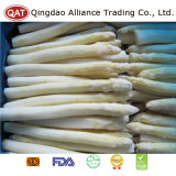 Espargos brancos congelados alta qualidade