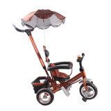 Preiswertes Sommer-Baby scherzt Dreirad