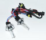 H7 Ampoule HID au xénon 12V 35W CA