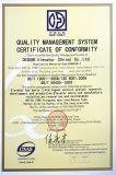 Elevador 1000kg del pasajero de la alta calidad para el edificio de oficinas