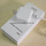 Chargeur de l'adaptateur usb USB pour l'iPad d'iPhone