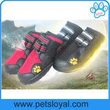 As sapatas de malha Pet impermeável melhor calçado Pet Botas de cães