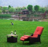 Insieme di vimini della mobilia del giardino del sofà del rattan esterno
