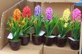 Plantes et fleurs en plastique artificielles des petites usines Gu201707 de bonzaies