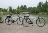 中国の電気バイクの自転車のEバイクEのスクーター8fun BoshiモーターShimanoの速度9ギヤグループ100km