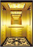 Elevación del hogar de la residencia en elevador del pasajero con la tecnología alemana (RLS-255)