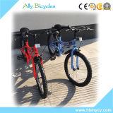 Bicicleta ajustável do adulto do esporte 20 da loja das bicicletas do assento de Malaysia