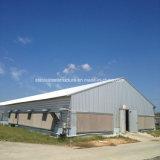 Camere di pollo d'acciaio della struttura d'acciaio dell'indicatore luminoso di fabbricazione della costruzione