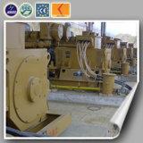 低い消費および高性能のディーゼル発電機(800KW)