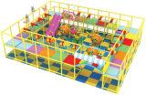 Ginnastica dell'interno commerciale di plastica della giungla del campo da giuoco dei bambini (TY-09402)