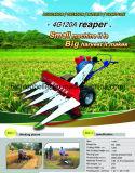 Тип рис прогулки и жатка зернокомбайна пшеницы