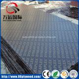 Impermeable contrachapado marino de contenedores Floorig
