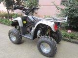 CE 110cc ATV Racing Nuevo diseño de cuerpo popular en Europa (ET-ATV005)