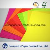 Hölzerne Massen-helles Farben-Papier