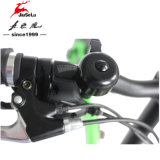 De goedkope Draagbare 250W 36V Vette Vouwbare Fiets van het Ontwerp van de Band (jsl039k-9)