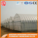 Groenten / Garden / Flowers / Farm Film Greenhouse