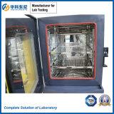 Chambre programmable de la température et d'essai d'humidité (80 litres) --Chambre climatique