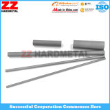 De Zz Hardmetal - carboneto material Rod do Virgin