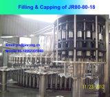 Automatic 10000bph Machine de remplissage d'eau pure pour bouteille en plastique