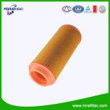 El Equipo de filtro de aire Auto Parts C15300 para motor Nissan