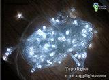 luz da corda da estrela do diodo emissor de luz 6W