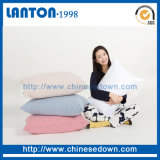 Chine Wholesale Plume Down Cushion