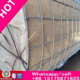Богачи торгуют ячеистой сетью обыкновенного толком Weave обеспечения/нержавеющей сталью Wiremesh