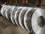Bande en acier galvanisée par largeur plongée laminée à froid/chaude du zinc SPCC/Dx51 de 16-32mm pour la construction