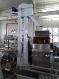 Lentilhas que enchem-se pesando a máquina de ensaque
