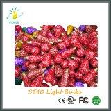 BIRNEN-Zeichenkette-Beleuchtung-Weihnachtsbirne der mehrfachen Farben-St40 Glüh