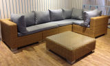 Sofà Furniture-84 esterno del rattan di svago