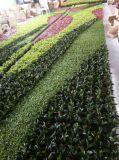 Nuevo Estilo UV protegido verosimilitud Plants Pared