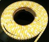 84LEDs AC110V RGBW/Ww 색깔 LED 빛 지구