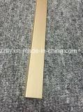 Profil en aluminium/en aluminium personnalisé pour la construction de matériau de construction a employé
