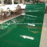 Banda transportadora de la alta calidad del alimento profesional de encargo del PVC