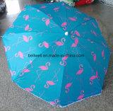 خارجيّة [بش ومبرلّا] [سون] ظل يطوي مظلة