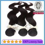 Top Quality Wholesale Natural Brazilian Human Hair