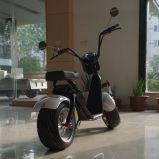 Motorino elettrico del Ce 1000W della Cina con la batteria smontabile superiore dello Li-ione (JY-ES055)