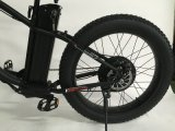 bici eléctrica de Haibike de la montaña 500W con la rueda gorda del neumático