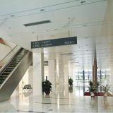 内部及び外部の使用のための工場価格の高品質の功妙な天井