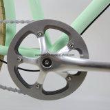 2017의 신제품 고품질 도시 자전거 (CTB17)