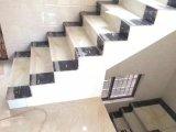 300*600mmガラス化された大理石の磁器階段ステップタイル
