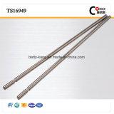 Fatto in asta cilindrica standard del motore dell'acciaio inossidabile dei nuovi prodotti di iso della Cina micro