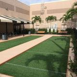 훈장 결혼식 상점 사무실 상점 호텔 홈 정원을%s 수직 합성 인공적인 연두색 벽을 정원사 노릇을 하는 35mm 고도 Lfg10