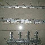 Stahlineinander greifen des stacheldraht-304stainless/Wand-Spitze