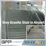 Escada de granito cinza chinês / passo / piso para interior