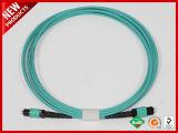 100Gbps cavo ottico accoppiamento della zona di polarità B del circuito di collegamento OM3 della fibra di protocollo 24F MTP
